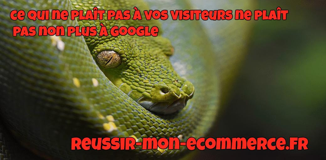 Ce qui ne plaît pas à vos visiteurs ne plaît pas non plus à Google