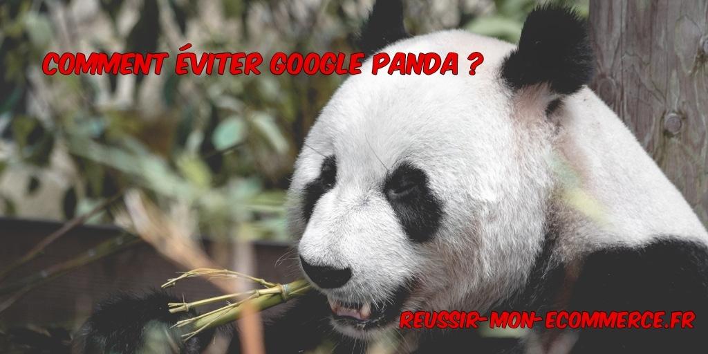 Comment éviter Google Panda ?