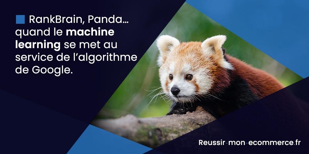 RankBrain, Panda… quand le machine learning se met au service de l'algorithme de Google.